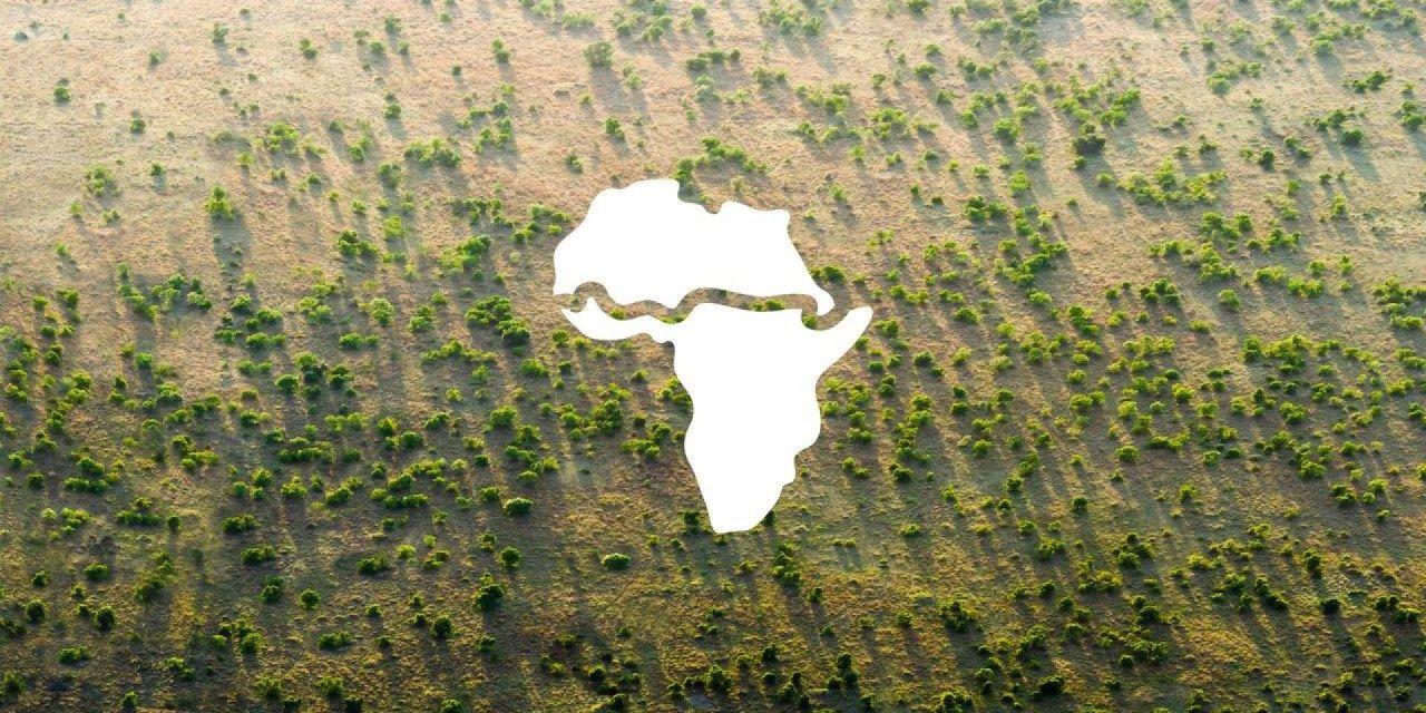 Desde África para África: La Gran Muralla Verde