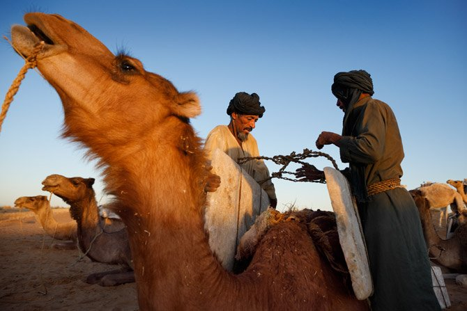 Evolución de las migraciones Tuareg en África occidental